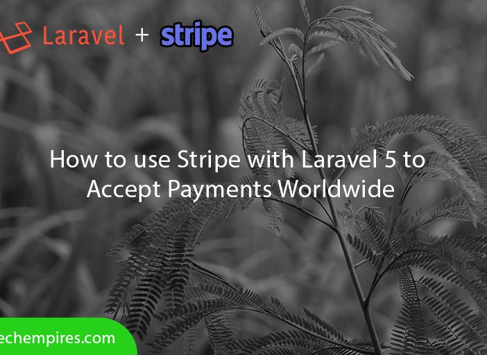 How to use Stripe with Laravel 5 to accept payments