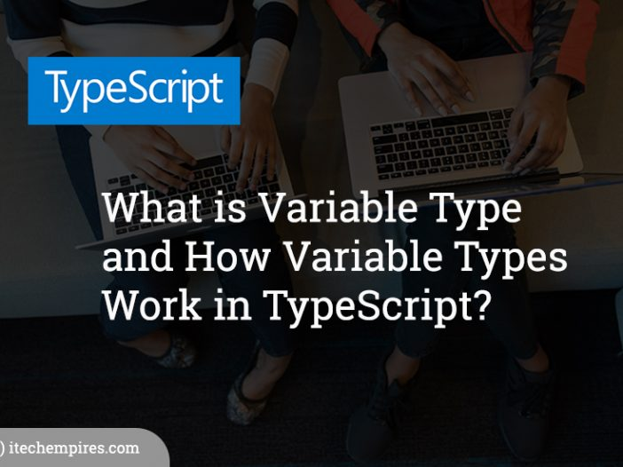 What is Variable Type and How Variable Types Work in TypeScript?