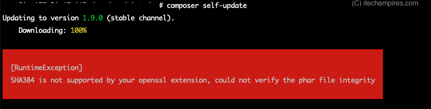 Composer self-update error exception