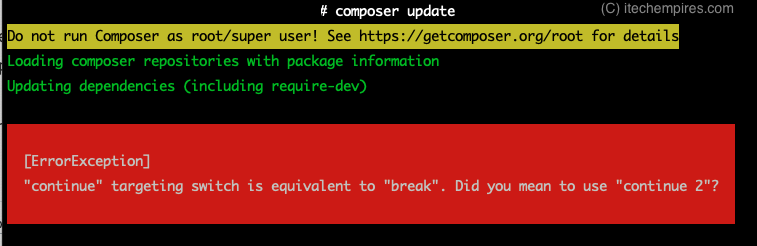 Composer Update Error Exception